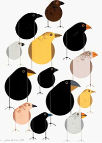 Charley Harper Best Sellers