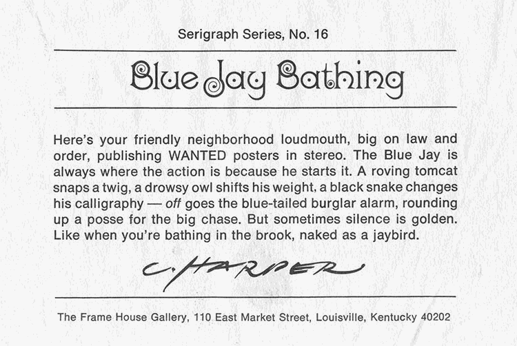 Serigraph Series, No. 16 - Blue Jay Bathing - Here's your friendly neighborhood loudmouth, big on law and order, publishing WANTED posters in stereo. The blue jay is always where the action is because he starts it. A roving tomcat snaps a twig, a drowsy owl shifts his weight, a black snake changes his calligraphy and off goes the bluetailed burglar alarm, rounding up a posse for the big chase. But sometimes silence is golden, like when you're bathing in the brook, naked as a jaybird. - Charley Harper - The Frame House Gallery, 110 East Market Street, Louisville, Kentucky 40202-1306